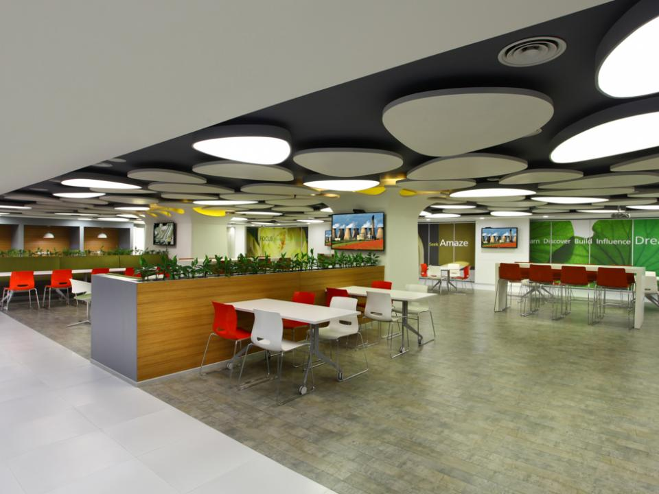 About Ambience India Pvt. Ltd.